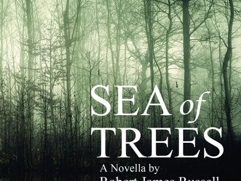 SeaofTrees_RobertJamesRussell