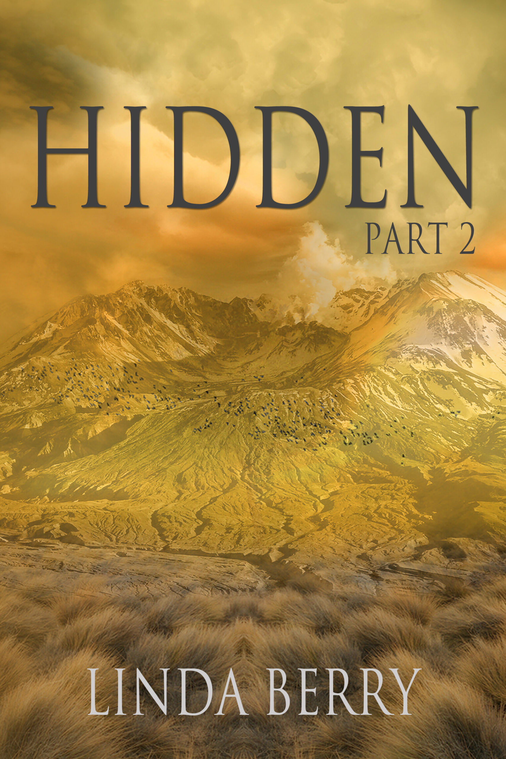 New Release: Hidden Part 2
